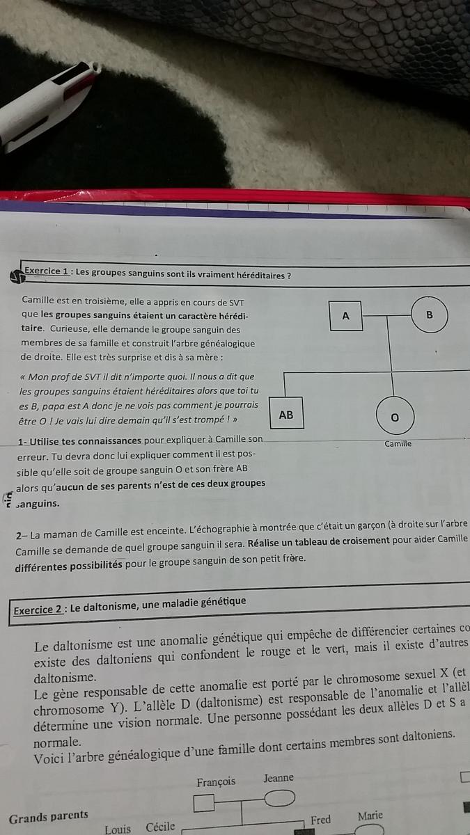 Bonsoir Je Doit Expliquer A Camille Comment Il Est Possible Qu Elle Soit De Groupe Sanguin O Et Nosdevoirs Fr