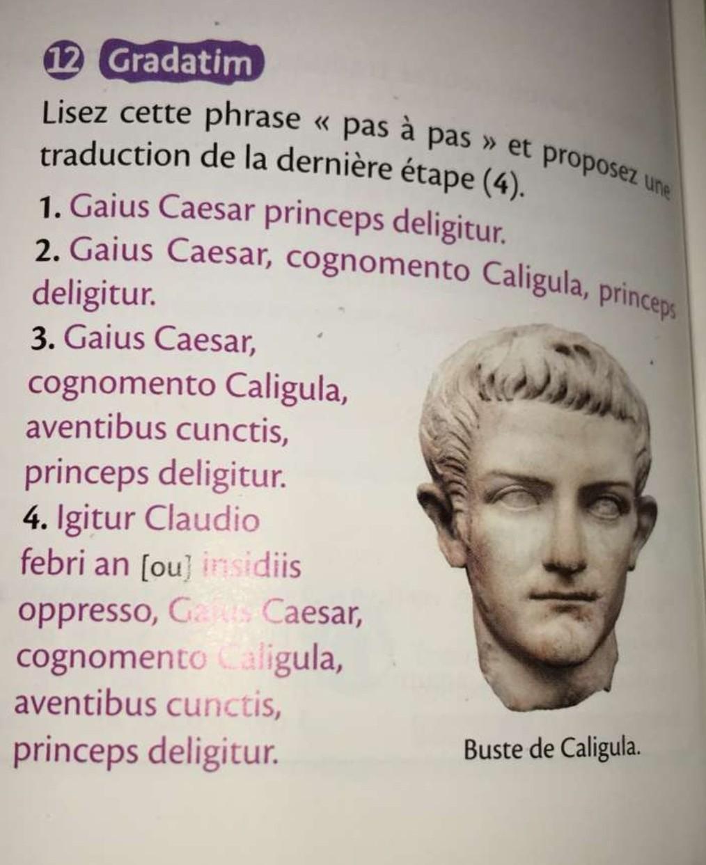 Bonjour, SVP je dois rentre cet exercice AUJOURD'HUI !Exercice de Latin, niveau 3ème ;Lisez ...